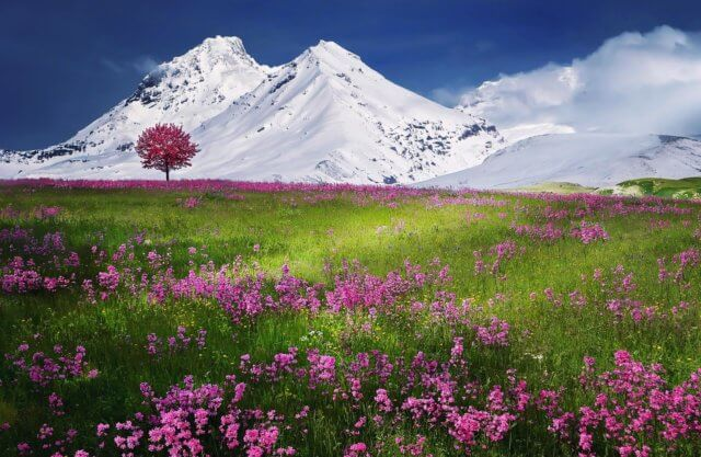 montagne naturopathie stress